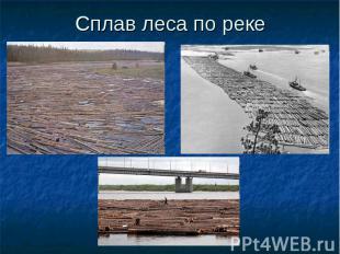 Сплав леса по реке