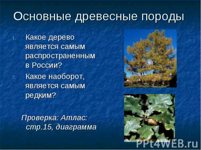 Основные древесные породы Какое дерево является самым распространенным в России?Какое наоборот, является самым редким?Проверка: Атлас: стр.15, диаграмма