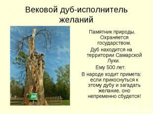 Вековой дуб-исполнитель желаний Памятник природы. Охраняется государством.Дуб на