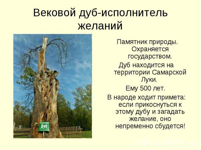 Вековой дуб-исполнитель желаний Памятник природы. Охраняется государством.Дуб находится на территории Самарской Луки. Ему 500 лет. В народе ходит примета: если прикоснуться к этому дубу и загадать желание, оно непременно сбудется!