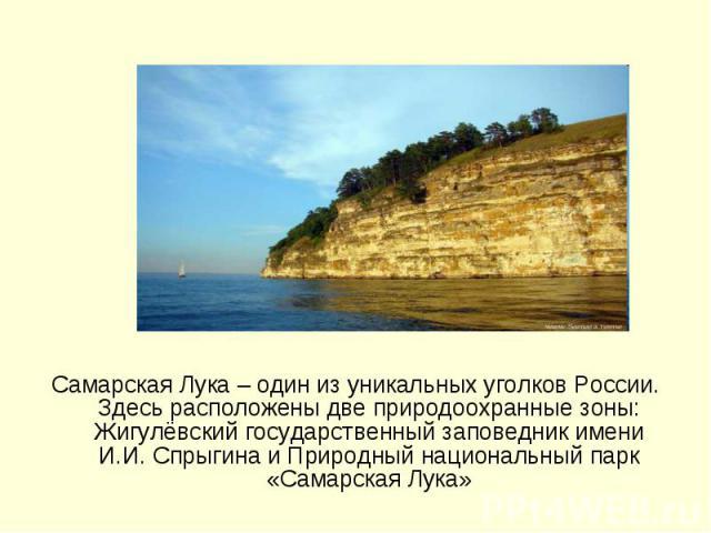Самарская Лука – один из уникальных уголков России. Здесь расположены две природоохранные зоны: Жигулёвский государственный заповедник имени И.И. Спрыгина и Природный национальный парк «Самарская Лука»
