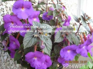 Учебное пособие для 7 класса по теме «Выращивание и размещение комнатных растени
