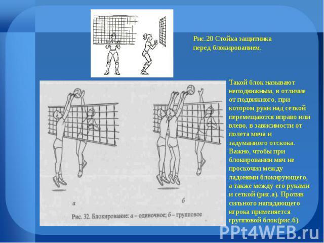 Рис.20 Стойка защитника перед блокированием. Такой блок называют неподвижным, в отличие от подвижного, при котором руки над сеткой перемещаются вправо или влево, в зависимости от полета мяча и задуманного отскока. Важно, чтобы при блокировании мяч н…