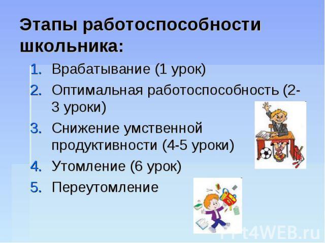 Этапы работоспособности школьника: Врабатывание (1 урок)Оптимальная работоспособность (2-3 уроки)Снижение умственной продуктивности (4-5 уроки)Утомление (6 урок)Переутомление