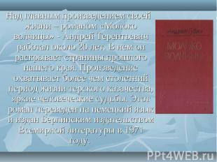 Над главным произведением своей жизни – романом «Молоко волчицы» - Андрей Терен