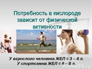 Потребность в кислороде зависит от физической активности У взрослого человека ЖЕ