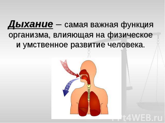 Дыхание – самая важная функция организма, влияющая на физическое и умственное развитие человека.