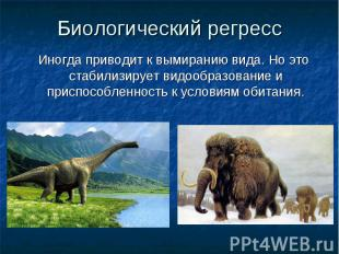 Биологический регресс Иногда приводит к вымиранию вида. Но это стабилизирует вид