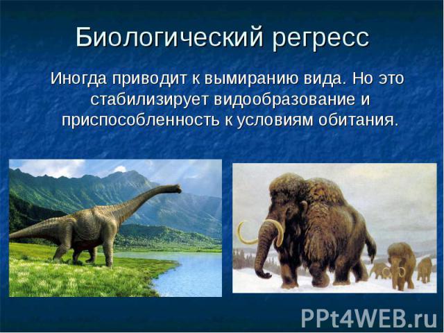Биологический регресс Иногда приводит к вымиранию вида. Но это стабилизирует видообразование и приспособленность к условиям обитания.