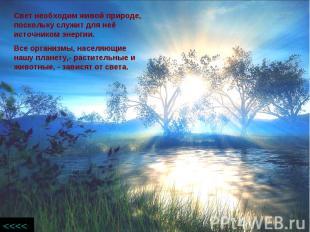 Свет необходим живой природе, поскольку служит для неё источником энергии.Все ор