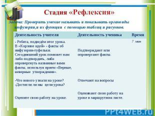 Стадия «Рефлексия» Задача: Проверить умение называть и показывать органоиды инфу
