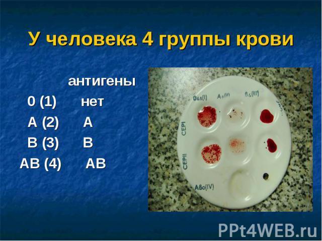 антигены антигены 0 (1) нет А (2) А В (3) ВАВ (4) АВ