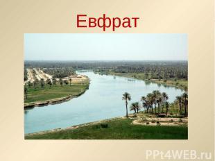 Евфрат