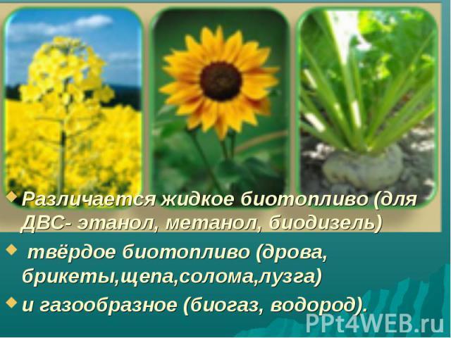 Различается жидкое биотопливо (для ДВС- этанол, метанол, биодизель) твёрдое биотопливо (дрова, брикеты,щепа,солома,лузга) и газообразное (биогаз, водород).