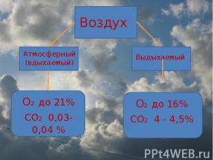 Воздух Атмосферный (вдыхаемый) О2 до 21%СО2 0,03-0,04 % Выдыхаемый О2 до 16%СО2