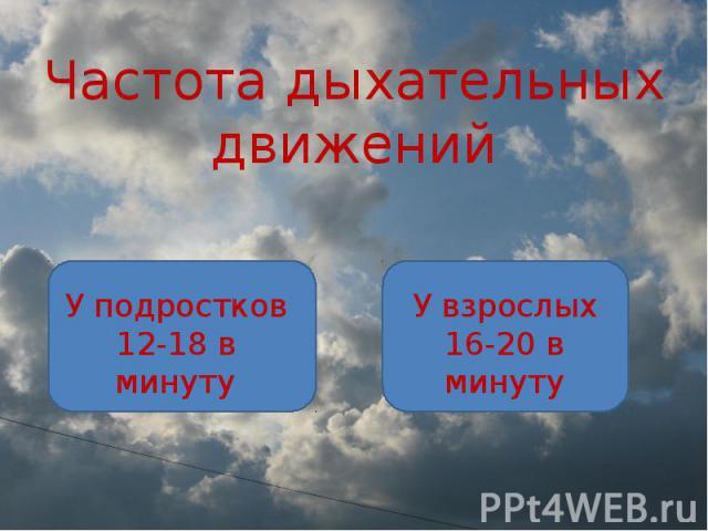 Частота дыхательных движений У подростков 12-18 в минуту У взрослых 16-20 в минуту