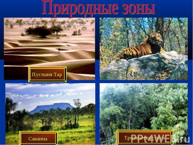 Природные зоны