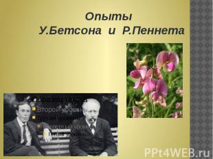 Опыты У.Бетсона и Р.Пеннета