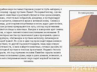 Бескрайнее море песчаных барханов уходит в глубь материка, к высохшему сердцу пу