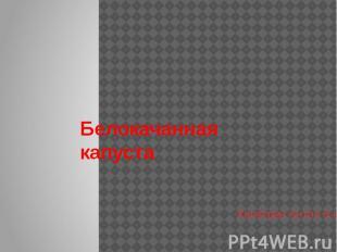 Белокачанная капуста Хачатрян Антон 5-а