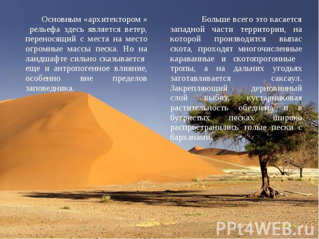 Основным «архитектором » рельефа здесь является ветер, переносящий с места на место огромные массы песка. Но на ландшафте сильно сказывается еще и антропогенное влияние, особенно вне пределов заповедника. Основным «архитектором » рельефа здесь являе…
