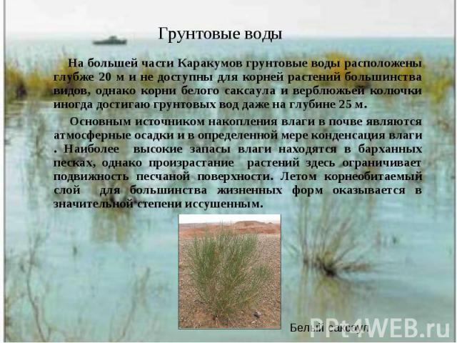 На большей части Каракумов грунтовые воды расположены глубже 20 м и не доступны для корней растений большинства видов, однако корни белого саксаула и верблюжьей колючки иногда достигаю грунтовых вод даже на глубине 25 м. На большей части Каракумов г…