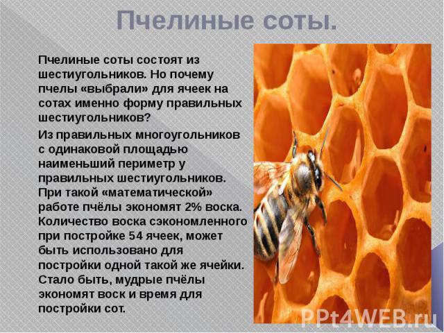 Пчелиные соты. Пчелиные соты состоят из шестиугольников. Но почему пчелы «выбрали» для ячеек на сотах именно форму правильных шестиугольников? Из правильных многоугольников с одинаковой площадью наименьший периметр у правильных шестиугольников. При …