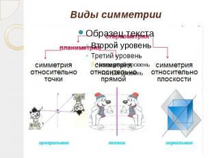 Виды симметрии