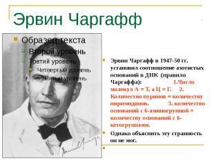 Эрвин Чаргафф Эрвин Чаргафф в 1947-50 гг. установил соотношение азотистых основа