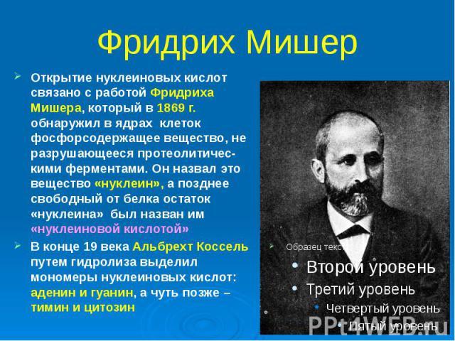 Фридрих Мишер Открытие нуклеиновых кислот связано с работой Фридриха Мишера, который в 1869 г. обнаружил в ядрах клеток фосфорсодержащее вещество, не разрушающееся протеолитичес-кими ферментами. Он назвал это вещество «нуклеин», а позднее свободный …