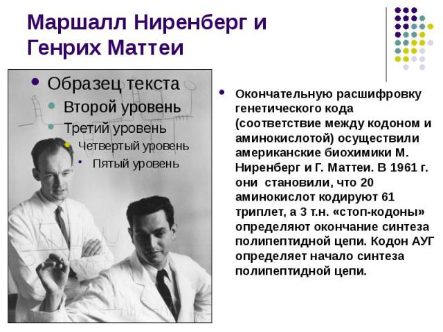 Маршалл Ниренберг и Генрих Маттеи Окончательную расшифровку генетического кода (соответствие между кодоном и аминокислотой) осуществили американские биохимики М. Ниренберг и Г. Маттеи. В 1961 г. они становили, что 20 аминокислот кодируют 61 триплет,…