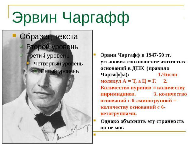 Эрвин Чаргафф Эрвин Чаргафф в 1947-50 гг. установил соотношение азотистых оснований в ДНК (правило Чаргаффа): 1.Число молекул А = Т, а Ц = Г. 2. Количество пуринов = количеству пиримидинов. 3. количество оснований с 6-аминогруппой = количеству основ…