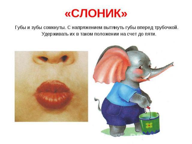 Губы и зубы сомкнуты. С напряжением вытянуть губы вперед трубочкой. Удерживать их в таком положении на счет до пяти. Губы и зубы сомкнуты. С напряжением вытянуть губы вперед трубочкой. Удерживать их в таком положении на счет до пяти.