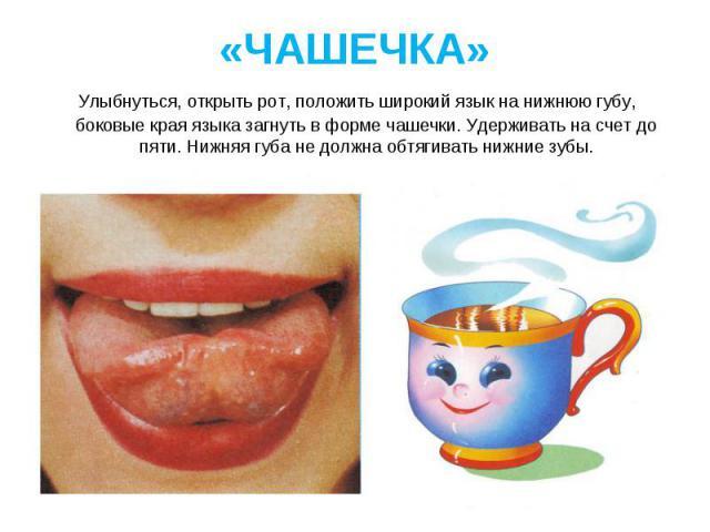 Улыбнуться, открыть рот, положить широкий язык на нижнюю губу, боковые края языка загнуть в форме чашечки. Удерживать на счет до пяти. Нижняя губа не должна обтягивать нижние зубы. Улыбнуться, открыть рот, положить широкий язык на нижнюю губу, боков…