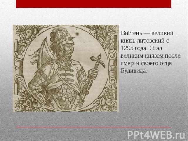Ви тень — великий князь литовский с 1295 года. Стал великим князем после смерти своего отца Будивида.