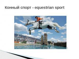 Конный спорт - equestrian sport