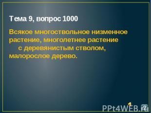 Тема 9, вопрос 1000 Всякое многоствольное низменное растение, многолетнее растен