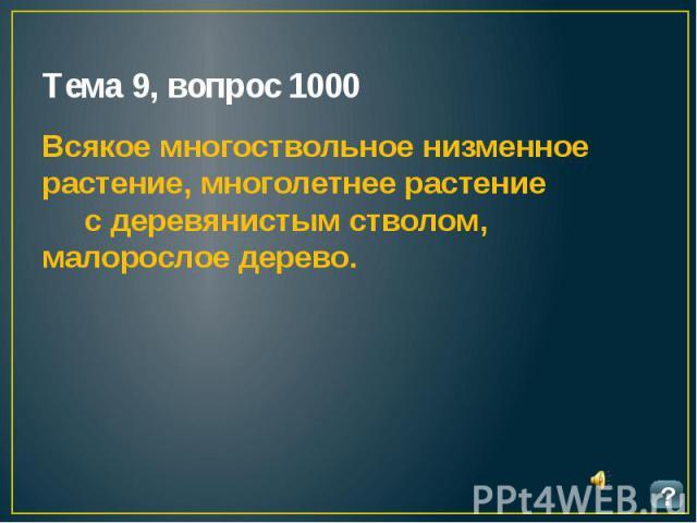 Тема 9, вопрос 1000 Всякое многоствольное низменное растение, многолетнее растение с деревянистым стволом, малорослое дерево.