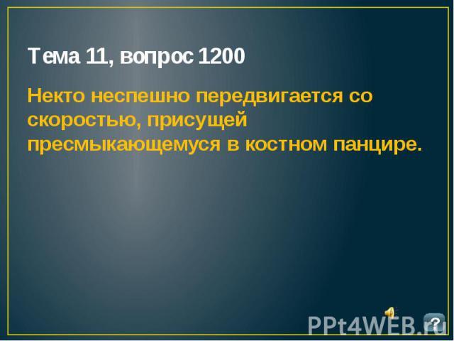 Тема 11, вопрос 1200 Некто неспешно передвигается со скоростью, присущей пресмыкающемуся в костном панцире.