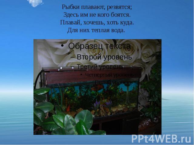Рыбки плавают, резвятся; Здесь им не кого боятся. Плавай, хочешь, хоть куда. Для них теплая вода.