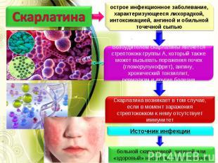 Скарлатина острое инфекционное заболевание, характеризующееся лихорадкой, интокс