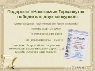 Подпроект «Насекомые Тарханкута» – победитель двух конкурсов: Малая академия нау