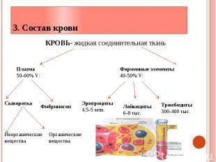 3. Состав крови КРОВЬ- жидкая соединительная ткань
