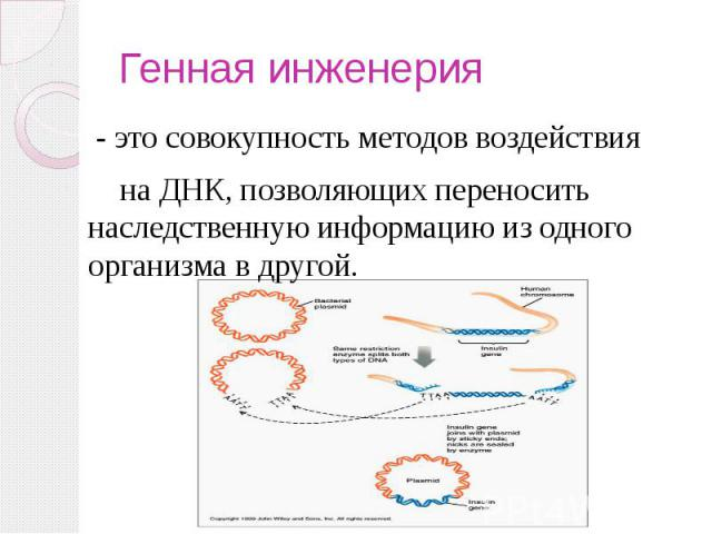 Генная инженерия - это совокупность методов воздействия на ДНК, позволяющих переносить наследственную информацию из одного организма в другой.