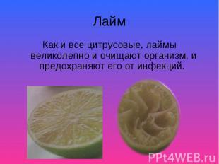 Как и все цитрусовые, лаймы великолепно и очищают организм, и предохраняют его о