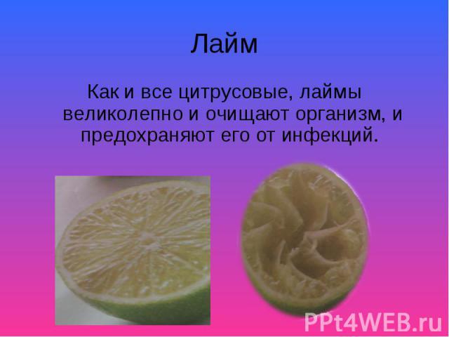 Как и все цитрусовые, лаймы великолепно и очищают организм, и предохраняют его от инфекций. Как и все цитрусовые, лаймы великолепно и очищают организм, и предохраняют его от инфекций.