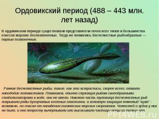 Ордовикский период (488 – 443 млн. лет назад) В ордовикском периоде существовали