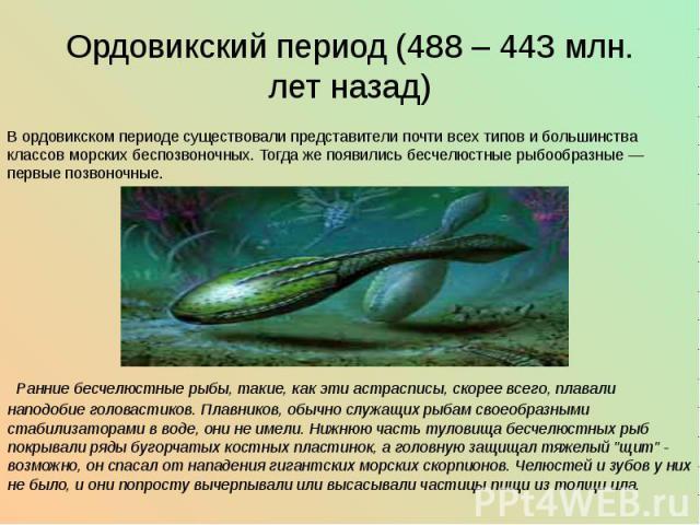 Ордовикский период (488 – 443 млн. лет назад) В ордовикском периоде существовали представители почти всех типов и большинства классов морских беспозвоночных. Тогда же появились бесчелюстные рыбообразные— первые позвоночные.   …