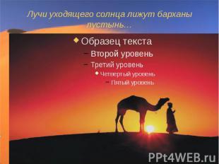 Лучи уходящего солнца лижут барханы пустынь…