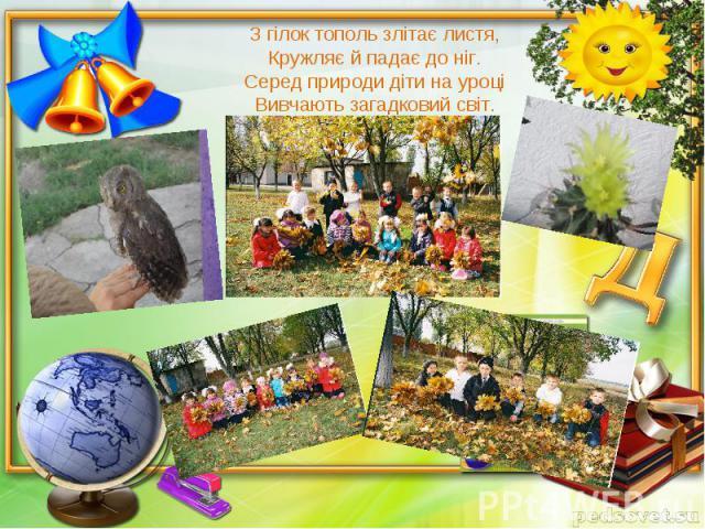 З гілок тополь злітає листя,Кружляє й падає до ніг.Серед природи діти на уроціВивчають загадковий світ.
